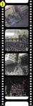 medium_film11.jpg