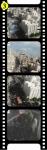 medium_film33.jpg