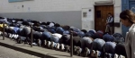 paris-muslims-flout-street-prayer-ban-in-paris-16-september-2011.jpg