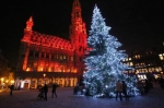 Brussels_Christmas_Tree_Lighted.jpg